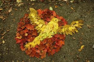 Bird Leaves Autumn
